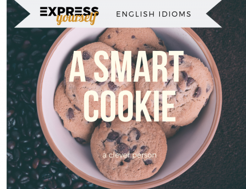 English idioms – a smart cookie