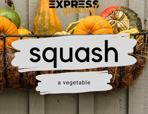 Words with multiple meanings – squash
