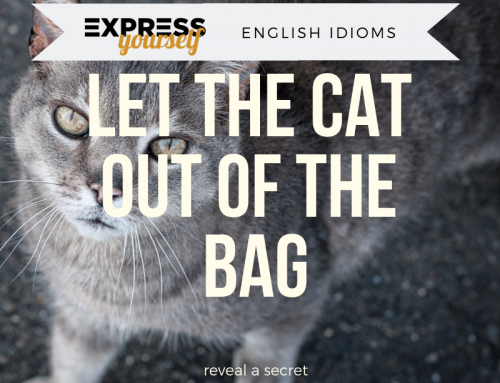 English idioms – let the cat out of the bag